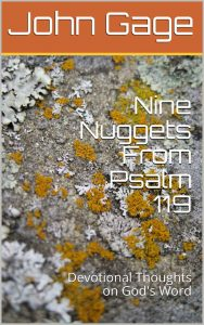 Nine Nuggets From Psalm 119